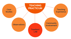 SLDM_teaching_practicum_01