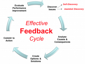feedbackcycle